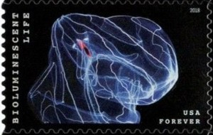 US Stamp Gallery >> Comb Jelly