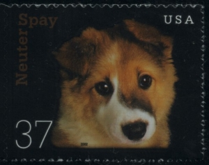 US Stamp Gallery >> Puppy