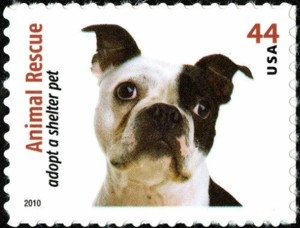 US Stamp Gallery >> Boston Terrier