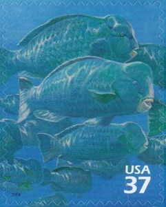 US Stamp Gallery >> Bumphead parrotfish