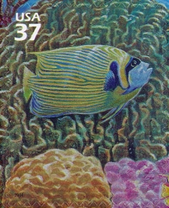 US Stamp Gallery >> Emperor angelfish, blue coral, mount coral