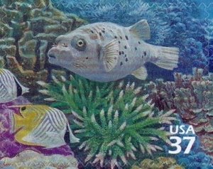 US Stamp Gallery >> Black-spotted puffer, threadfin butterflyfish, staghorn coral