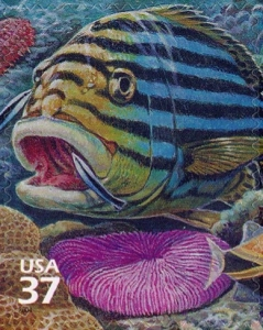 www.usstampgallery.com >> US Postage Stamp >> Oriental sweetlips bluestreak cleaner wrasse mushroom coral