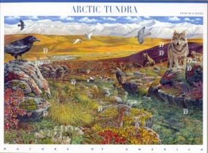 US Stamp Gallery >> Arctic tundra
