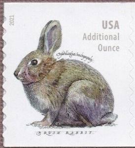 US Stamp Gallery >> Brush Rabbit