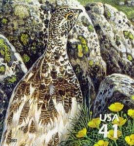 US Stamp Gallery >> White-tailed ptarmigan