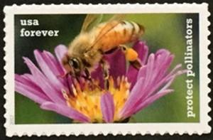 US Stamp Gallery >> Western Honeybee & New England