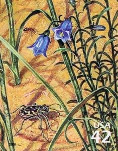 US Stamp Gallery >> Tiger beetle