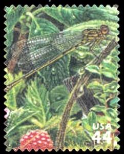 US Stamp Gallery >> Koele Mountain damselfly, 'Akala