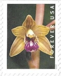 US Stamp Gallery >> Platanthera leucophaea