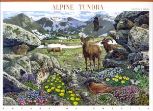 US Stamp Gallery >> Alpine Tundra