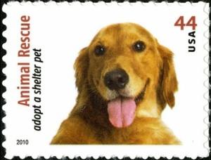 US Stamp Gallery >> Golden Retriever