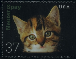 US Stamp Gallery >> Kitten