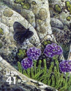 US Stamp Gallery >> Magdalena alpine butterfly