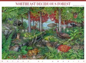 US Stamp Gallery >> Northeast deciduous forest