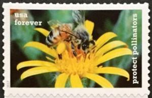 US Stamp Gallery >> Western Honeybee & Golden